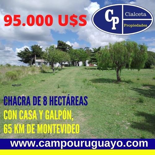 Chacra De 8 Hectáreas Y Media A 65 Km De Montevideo