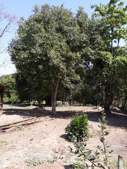 Sítio Em Jardim Santa Maria Ii, Mogi Guaçu/sp De 0m² 3 Quartos À Venda Por R$ 375.000,00 - Si426598