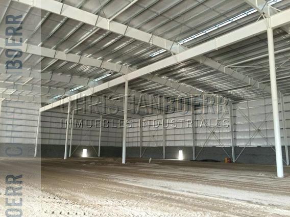 Zarate - 4.000m Logisticos A Estrenar En Parque Industrial