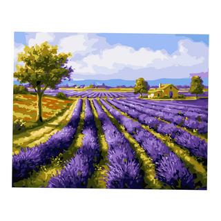 Diy Digital Oil Painting Kit Paint By Numbers Canvas Artwork