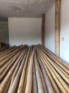 Bambu Madake 3-4 Cm Diam X 3 Mts