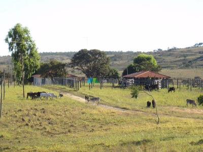 Fazenda Pecuária 1000 Ha Região Abaeté (mg) - Cod: Mta745
