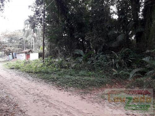 Terreno Para Venda Em Peruíbe, Guarau Garça Vermelha - 1619_2-691444