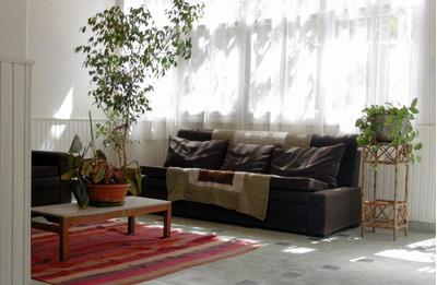 Vendo Casa Céntrica Y Fondo De Comercio Bello Jazmin