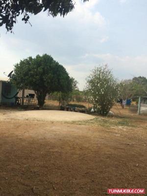 Terreno En Tinaquillo, Edo. Cojedes De 1 Hectárea. Sdt-079