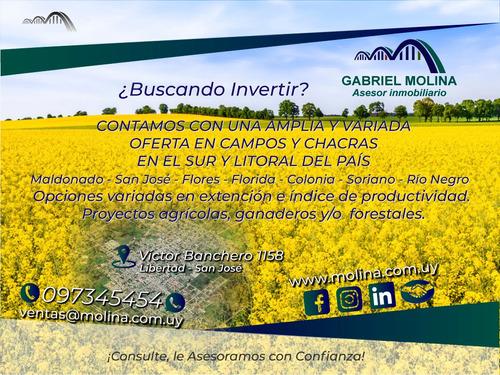 Imagen 1 de 1 de Venta De Campos - Sur Y Litoral Del País!!