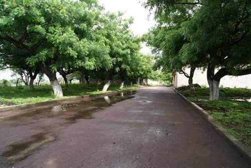 Totolapan Terrenos Dentro Del Pueblo