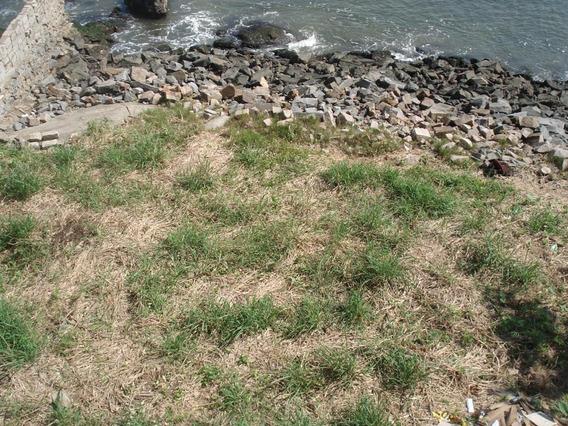 Terreno Em Ilha Porchat, São Vicente/sp De 0m² À Venda Por R$ 540.000,00 - Te303002