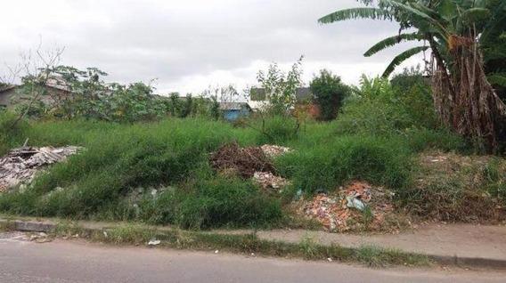Terreno Para Venda Em São José Dos Pinhais, Afonso Pena - L619