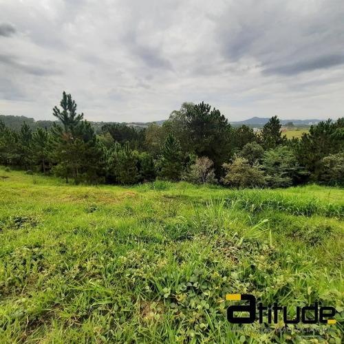 Imagem 1 de 13 de Terreno No Reserva Santa Anna. - 4835