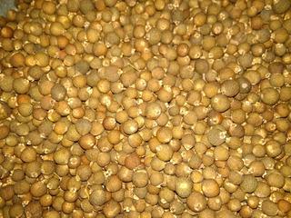 Pimienta Gorda Seca, Orgánica, Recién Cosechada 1 Kilo