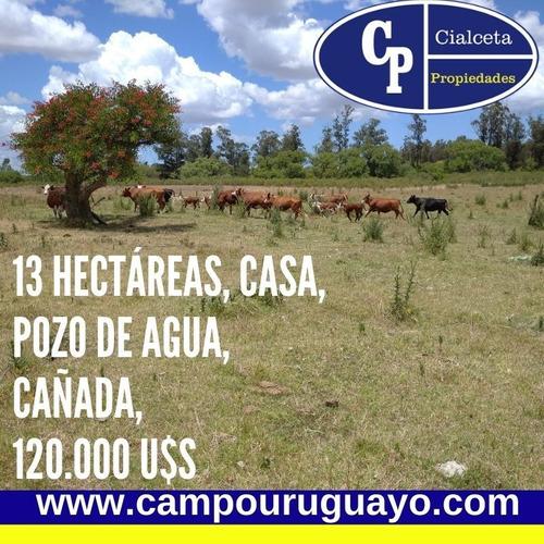 Chacra De 13 Hectáreas Con Casa Y Cañada
