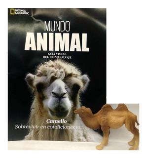 Mundo Animal National Geographic Nº 13 Camello