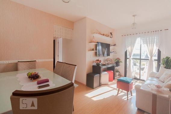 Apartamento Para Aluguel - Mooca, 3 Quartos, 75 - 893114769