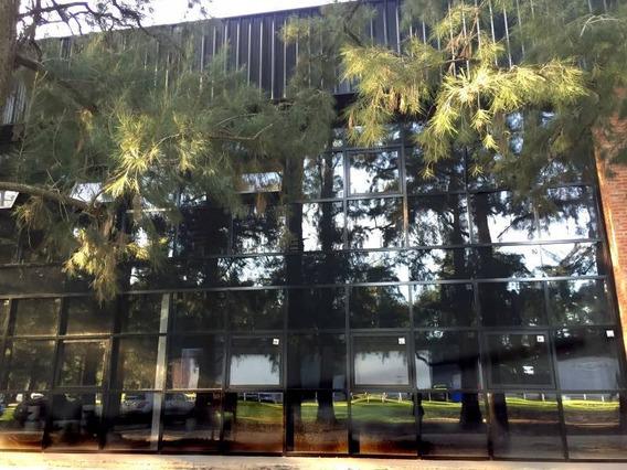 Galpones, Depósitos O Edificios Ind. Alquiler Pilar