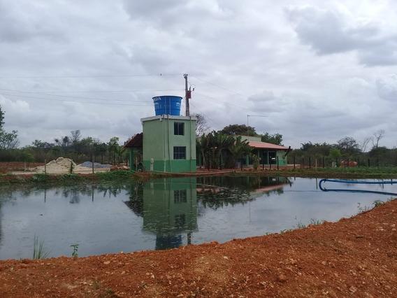 Sítio Com 22.5 Ha Na Região Da Onça - Jequitibá -mg.casa Boa ,muito Bom De Água, Tem Irrigação Para Hortaliça . - 450