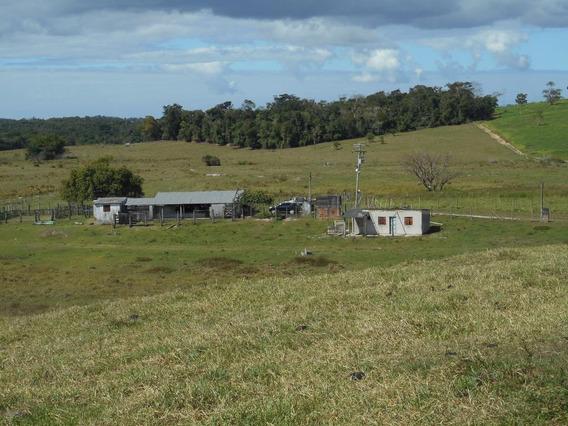 Fazenda Com 2 Dormitórios À Venda, 580800 M² Por R$ 1.890.000 - Reginópolis - Silva Jardim/rj - Fa0001