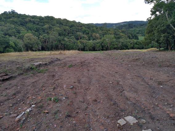 L.s Qualidade E Bom Negocio Terrenos De 1000 Mts Plainos