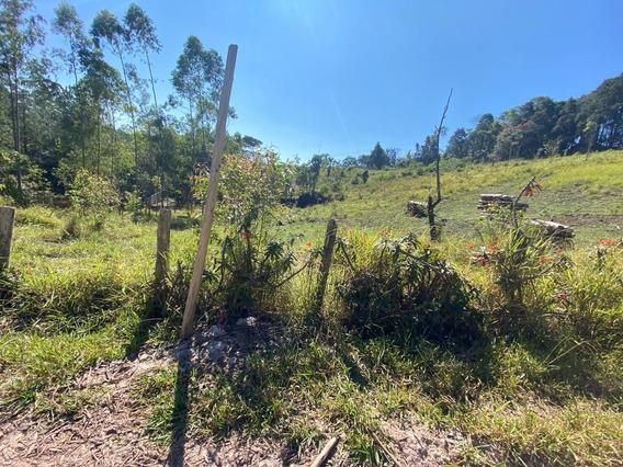 18c Precisando De Um Terreno Bom Para Investir ?