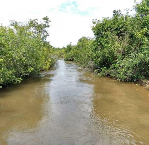 Fazenda A Venda Para Pecuária Em Camapuã - Ms - 894