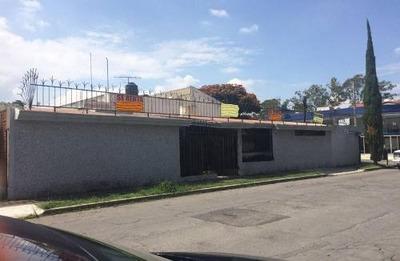 Casa En Renta En Colonia San Jose Mayorazgo