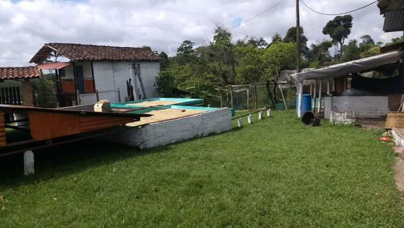 Venta Finca Filandia Vereda Bambuco Alto