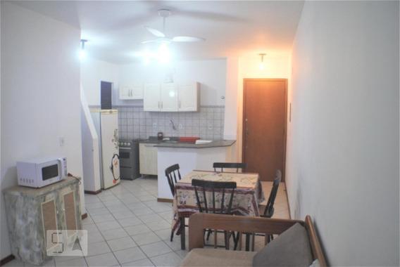 Apartamento Para Aluguel - Ingleses, 1 Quarto, 54 - 893097205