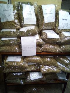 Alfalfa ,heno De Festuca,mezcla De Pasturas Y Alfalfa
