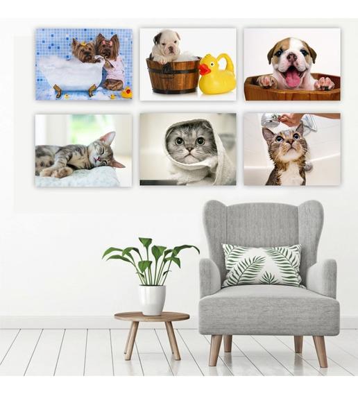 Quadro Placa Mdf Kit 20x30cm Pet Shop Gato Cachorro Banho