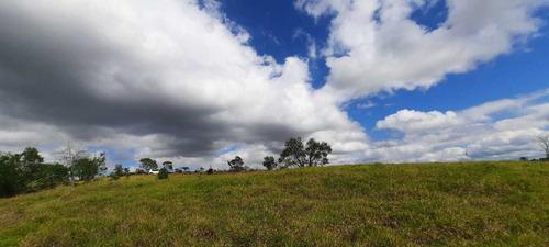 Imagem 1 de 14 de E03- Promoção Terrenos Com Acesso Direto Ao Asfalto