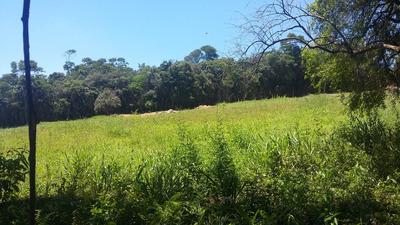 Gl Terrenos Ecológicos Plainos