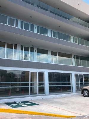 Locales Nuevos En Edificio, Col Centro
