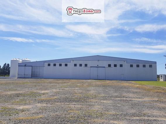 Fondo De Comercio - Planta Industrial En Actividad - San Pedro