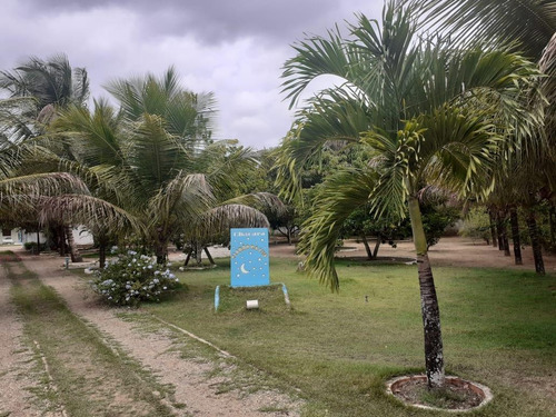 Chácara Para Venda, Zona Rural - Fz - 074_1-1741101