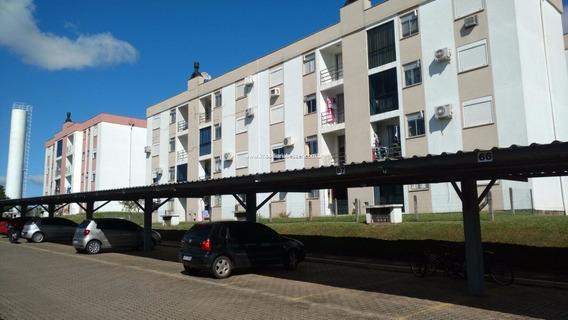 Apartamento Com 3 Dormitorios Em Sapucaia - V-603