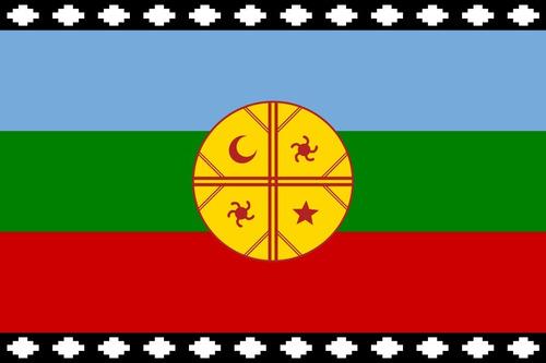 Imagen 1 de 1 de Bandera Mapuche 60x100cms Excelente Calidad
