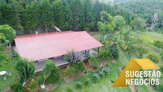 Sítio Com Linda Casa Para Plantio Ou Criação - 2921