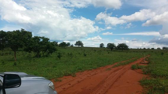 Vende-se Fazenda A 29 Km De Chapada Dos Guimarâes Mt,