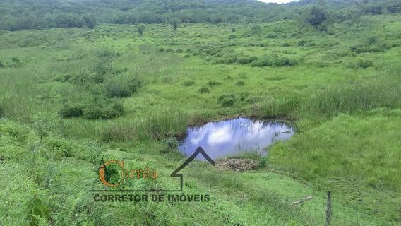 Sitio Com Excelente Area Para Criacao Em Sete Barras -sp