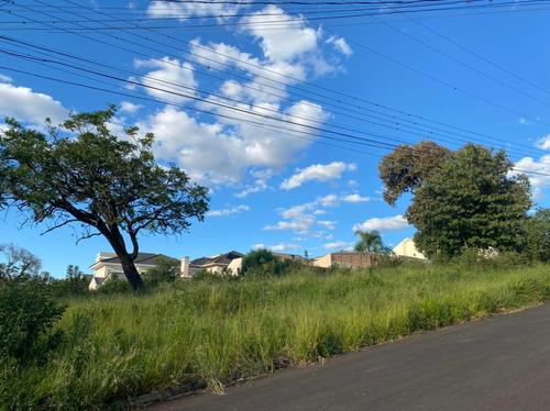 Imagem 1 de 1 de Terreno À Venda, 418 M² Por R$ 450.000,00 - Estrela - Ponta Grossa/pr - Te0218