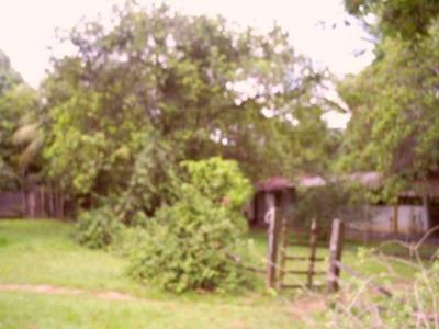 Sitio Lauro De Freitas Entre Itinga / Caji - Tb48 - 3055362