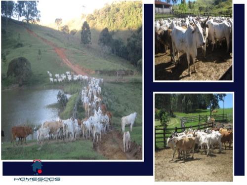 Vendo Uma Super Fazenda Em Itupeva - Porteira Fechada - R$ 21.000.000,00 - Fa00001 - 32954468