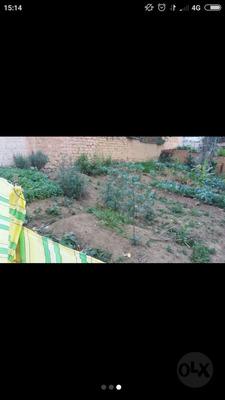 Casa A Precio De Terreno En La Ciudad De Chachapoyas