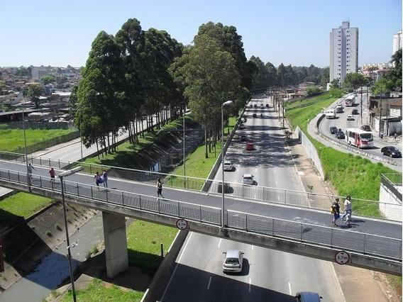 Terreno Em Itaquera, São Paulo/sp De 0m² À Venda Por R$ 400.000,00 - Te260786