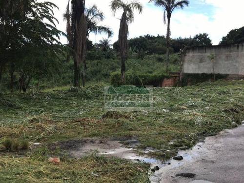 Terreno À Venda, 1300 M² Por R$ 250.000 - Colônia Santo Antônio - Manaus/am - Te0766