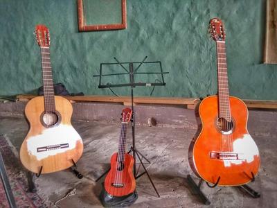 Clases Guitarra Ukelele Método Pedagógico Online A Distancia