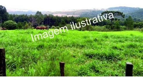 Imagem 1 de 2 de Terreno Em Mairinque/mato Dentro - Sem Burocracia