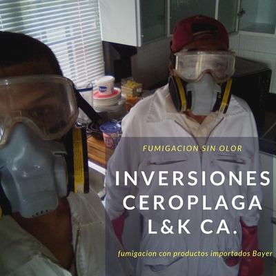 Servicio De Fumigacion Cucarachas Chiripas Roedores Termitas