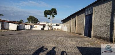 Galpão Para Aluguel Parque De Exposições