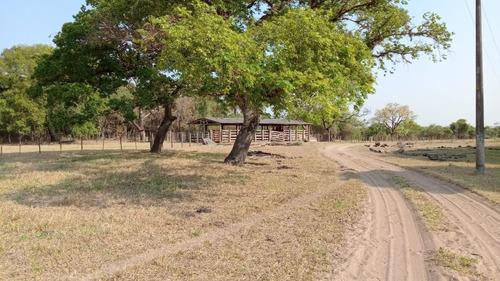 Fazenda Para Gado A Venda Em Rincao-sp, Taquaral, Com 50 Alqueires, Casa, Curral, Bem Cercada, Rio Mogi Na Divisa - Fa00030 - 68545798